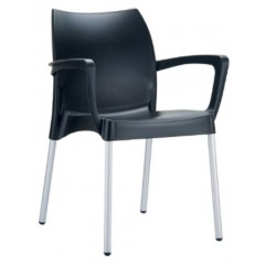 Domenica Arm Chair in Black